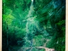 jura-lac-riviere-IMG_2590