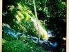 jura-lac-riviere-IMG_2737