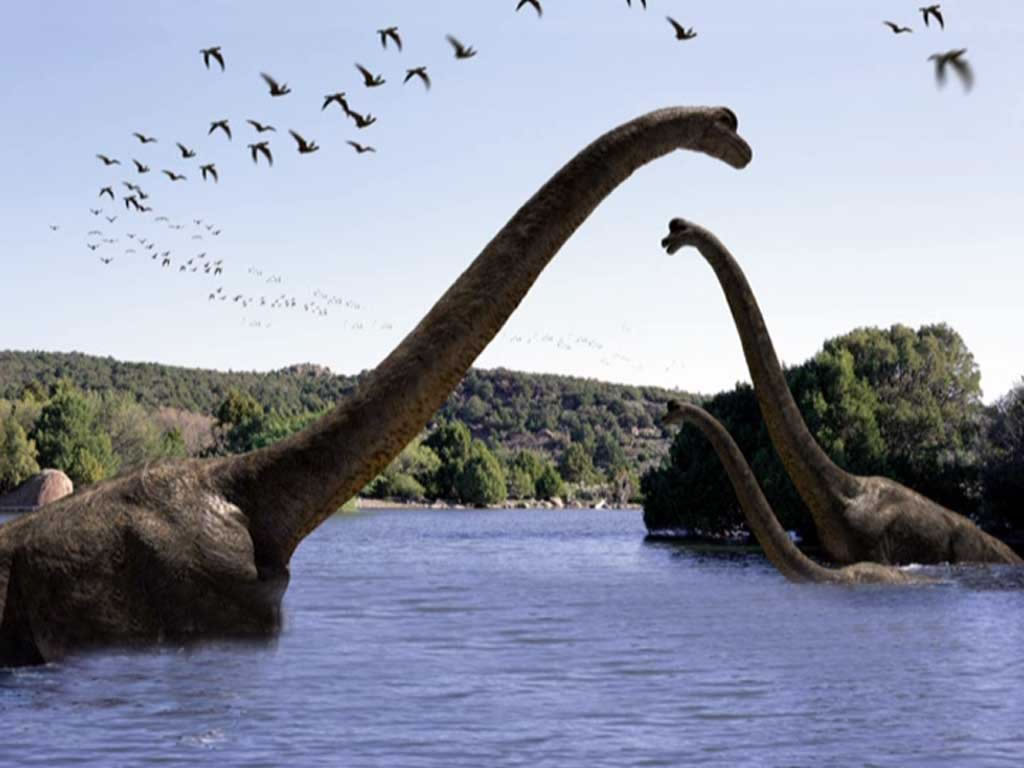 dinosaures dans le jura
