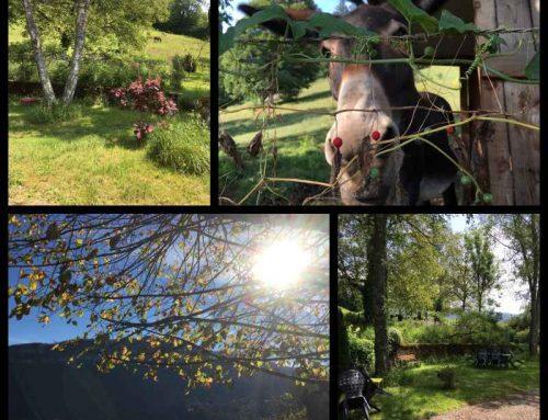 Vacances pas chères dans le Jura