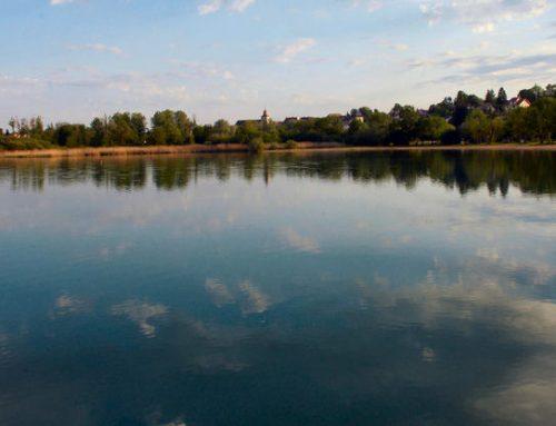 Lac de Clairvaux les Lacs