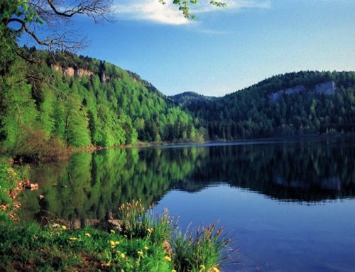 Lac de Bonlieu